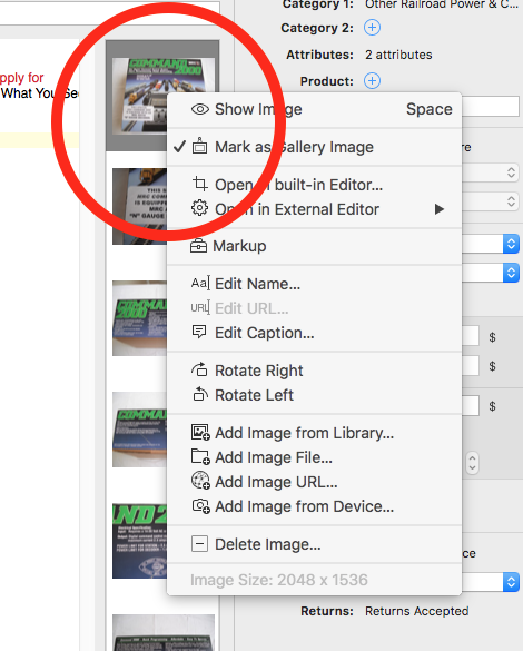 No overlay icon visual indication of Gallery Image in Editor Mode